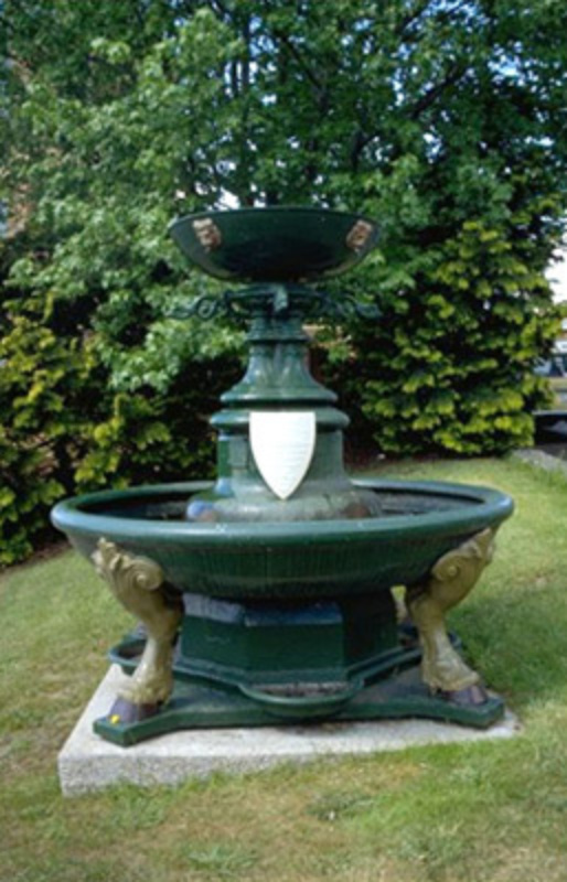 Launceston Trough 1